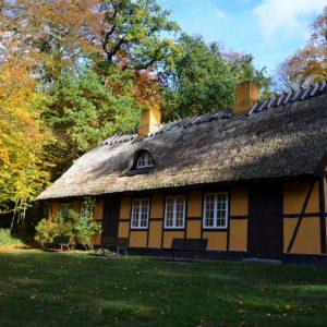 Det gule hus